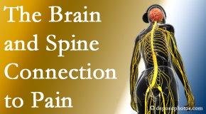 Layden Chiropractic looks at the connection between the brain and spine in back pain patients to better help them find pain relief.