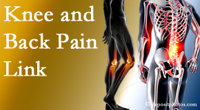 Layden Chiropractic treats back pain and knee osteoarthritis to help prevent falls.